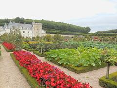Jardins de Villandry. (Only Tradition) Tags: france castles frankreich frana frankrijk loire francia franca castelli castillos chteaux indreetloire franciaorszg 37510  frana