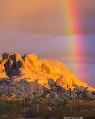 Joshua Tree Rainbow (kevin-palmer) Tags: morning summer sunlight chihuahua storm rain yellow clouds sunrise gold dawn golden nationalpark rainbow rocks shadows desert joshuatree vivid stormy august formation monsoon mojave thunderstorm joshuatreenationalpark colorfu kevinpalmer takumar135mmf25 pentaxk5