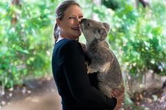 Koala Love (fate atc) Tags: lisa australia goldcoast animalportrait currumbinwildlifesanctuary koalalove laidbackwildlife