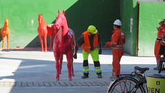 What is going on here? (Bjrn Steiner) Tags: horse is going here what nytorv kongens