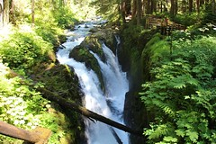 Sol Duc Falls (daveynin) Tags: water waterfall nps falls trail olympic deaftalent deafoutsidetalent deafoutdoortalent