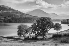 Lowes Water (Future-Echoes) Tags: trees england blackandwhite bw lake black mountains water grass canon reflections mono haze hills cumbria loweswater thelakedistrict 5dmk3