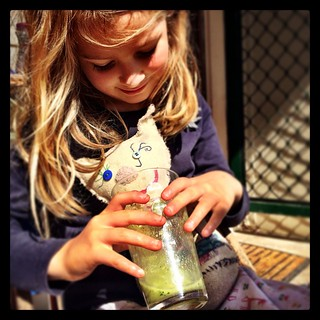 "365/251 • green smoothy on the porch this morning. Z-Mow (rhymes with 'cow') apparently approved. I took this shot and Z said: ""She moved her head for the photo!"" • #pleasedontgrowuptoofast #2014_ig_251 #6yo #sunshine #morningtonpeninsula #home #love"