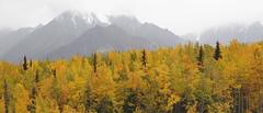 Matanuska Valley (Allyeska) Tags: autumn fall alaska highway glenn ak september valley matanuska 2014