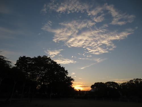 東の空が明るくなってきました