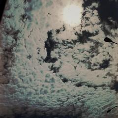 Always looking up (Neddie Facio Photography) Tags: sky sun up clouds sunnyday brightsun skylover alwayslookingup cloudlover hipstamatic vincentlens rijksfilm
