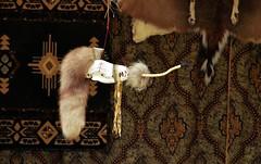 Animal Skull Pipe (Adventurer Dustin Holmes) Tags: skulls pipe animalskull tobaccopipe tobaccopipes noveltypipe jamesrivermountainmanrendezvous noveltypipes