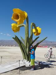 20140826 Burning Man (232) (MadeIn1953) Tags: flower artist nevada burningman blackrockcity brc bm artproject 2014 tututuesday 201408 bm2014 burningman2014 brc2014 20140826