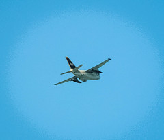 Miller Knox~~Military Aircraft Overhead  09/17/2014 (CatsMan2) Tags: california plane aircraft flight pointrichmond militaryjet millerknox