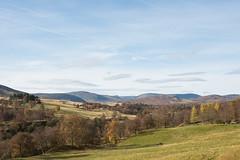Glenesk 15531 (Cal Fraser) Tags: glenesk scotland unitedkingdom gb