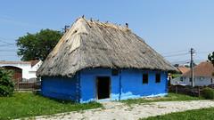 Anglų lietuvių žodynas. Žodis thatch reiškia 1. n šiaudinis stogas; 2. v dengti šiaudais lietuviškai.