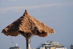 ombrellone (ChiaraZanottiii) Tags: ombrellone paglia spiaggia mare vento