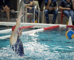 2A150274 (roel.ubels) Tags: uzsc zpb hl productions waterpolo eredivisie utrecht krommerijn 2016 sport topsport