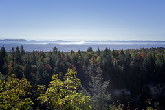 DSC_3218 (Stephen Biebel Photography) Tags: landscape northeastern leaves changing autumn fall october minnewaska newyork woods forsest trees hiking overlook scenic vistas view colors