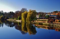 Riverside walk reflected (Sundornvic) Tags: river severn shrewsbury shropshire water bridge architecture reflections blue sky trees arches paths town