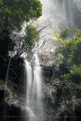 DSCF7577 (kingston Tam) Tags: waterfall river rapids sedimentaryrock stone ancientcity guizhou wetlandpark park canyon landscape naturallandscape mountain scenery streetscape oldfashioned streetphotography castle hawkers peddler fujifilmxt1