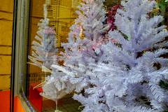 _DSF0402 (ad_n61) Tags: fujifilm xt1 fujinon super ebc xf 18135mm 13556 ois wr invierno feria otoño frio lluvia navidad 2016 belen zaragoza plaza del pilar nieve