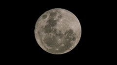 Superluna 14-11-16 (..Javier Parigini) Tags: argentina rosario d800 200400mmf4 nikon nikkor superluna luna lunallena fullmoon moonflickr javierparigini