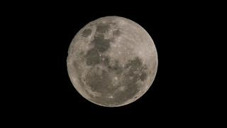 Superluna 14-11-16