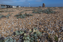 Look Out Post (ClydeHouse) Tags: lighthouse shingle beach headland byandrew seakale coast lookoutpost kent coastguard seaside dungeness