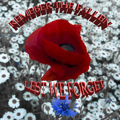 The fallen (Through-my-eyes.) Tags: remembrance remembranceday remember poppy