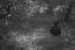 Katherine Duncan Aimone, sitting, olive grove, into the sun, Cortona, Tuscany, Italy, Nikon D40, Sigma 18-50mm EX DC MACRO, 11.15.16 (steve aimone) Tags: katherineaimone intothesun olive grove olivegrove cortona tuscany italy nikond40 sigma1850mmexdcmacro blackandwhite monochrome monochromatic landscape grasses