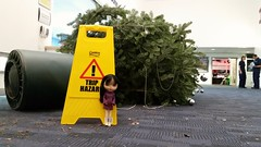 Oh no! Treetastrophe!! (sozzielou) Tags: edna christmas tree catastrophe fallen mishap warning yellow sign trip hazard blythephysicalchallenge bpc danger