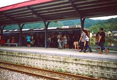 _4 (Taiwan's Riccardo) Tags: 2016 taiwan color 135film fujifilmrdpiii transparency plustek8200i rangefinder leicam5 leicalens fixed summaronm 3535