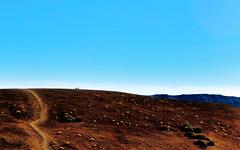 Postcard from Mars_0476 (kurbeltreter20) Tags: spain spanien tenerife teneriffa teide vulkan volcano mountain color sky blue