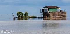 Cambodge (wpierre48) Tags: cambodge tonlsap