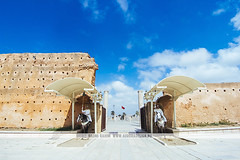 Hassan Tower - Rabat, Morocco (Naomi Rahim (thanks for 2 million hits)) Tags: rabat morocco africa northafrica 2016 travel travelphotography nikon nikond7200 wanderlust summer architecture hassantower entrance guards horses bluesky ruins  mosque