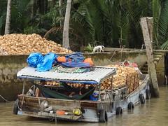 IMG_3345 (program monkey) Tags: vietnam mekong river delta cargo boat ben tre tra vinh coconut processing loaded hammock relax dog