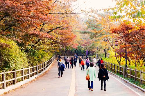 Thumbnail from Namsan Park