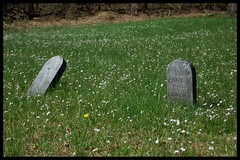 Tosh Cemetery (The Lone Wadi Archives) Tags: toshcemetery graveyard headstones tombstones death finalrestingplace gravestones spring crittendencounty kentucky