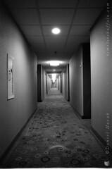 Film Photography: The Broken Symmetry of a Hotel Corridor (NFE_0184) (masinka) Tags: hallway corridor tunnel symmetry hotel courtyard marriott film analog kodak trix 400 xtol nikon fe broken architecture interior inside