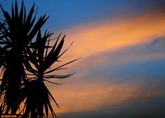 AugustThirtieth2015 (mcshots) Tags: usa california socal losangelescounty summer sunset coast sky clouds hot humid evening sun 2015 stock mcshots