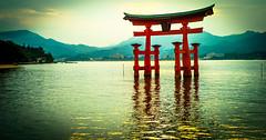 Empire of the Sun (modigliani76) Tags: japan japon itsukushima hiroshima torii sun nihon kyoto doors japantoriigates colors m8 leica japanphoto risingsun beauty beaute landscape paysage japanflickr sugoi island japanisland voigtlander35mm