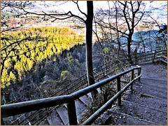 Aufstieg ins Kaisertal (aNNa schramm) Tags: treppensteps bame wald wood trees fence zaun