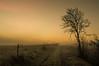 Eifel Landscape in Morning Mist (Netsrak (on/off)) Tags: baum bäume dezember herbst landschaft morgen natur nebel sonne sonnenaufgang autumn december fall fog landscape mist morning nature sun sunrise tree trees eifel licht light path way weg