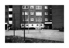 . (Alex Sander S.) Tags: epsonv500 filmphotography classicblackwhite kodak tmy ishootkodakfilm istillshootfilm analogphotography kranichstein planar45mm contaxg1 45mm urbanphotography caffenol darmstadt film classicblackandwhite 4001600 filmisnotdead kodaktmax believeinfilm ilovefilm carlzeiss carlzeissplanar urban contax 35mmfilm rangefinder analog