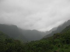 IMG_7647 (gundust) Tags: usa beach forest island hawaii bay us hiking may cliffs northshore kauai hi creeks valleys napalicoast 2014 kalalautrail