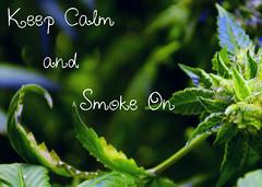 Smoke On (Elinay) Tags: green weed smoke cancer pot medicine dope arthritis marijuana lupus cure herb herbal cannabis chronic stoner illness chemo spoonie fibromyalgia 420spoons spooniestoner