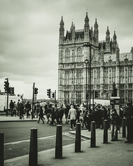 Parliament Crossing (aecclesphoto) Tags: blackandwhite london mono crossing parliament pedestrians palaceofwestminster nikond700
