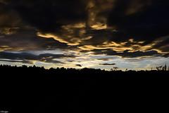 Sunset (Elvira von der Lippe) Tags: camera light sunset sky nature norway clouds forest photography nikon natur dramatic himmel artsy highnoon lys movment skyer solnedgang elviralippe