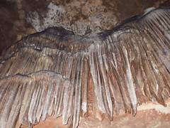 BLUE0838 (David J. Thomas) Tags: summer students highschool adventure caves arkansas caving biology speleology batesville lyoncollege ubms biospeleology upwardboundmathscience meachamcave