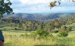 550 Bulmers Road, Hogarth Range NSW