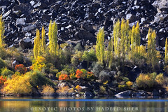Across the Lake (C@MARADERIE) Tags: autumn lake color nature horizontal rocks colorful natural nopeople scene naturism northernareas talltrees colorimage skardu colorsofautumn autumnalscene upperkachura skarduvalley lakeupperkachura naturismphotography