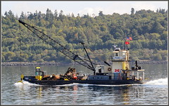 Clean Up Crew (tdlucas5000) Tags: seattle lake bay union cleanup driftwood hook elliot barge