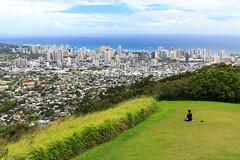 IMG_3647 (nathanwulf) Tags: usa nature canon hawaii honolulu eos60d
