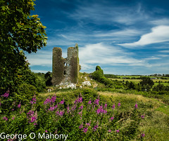 Dunhill Castle (George O Mahony) Tags: castle waterford old sky